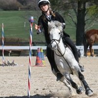 Mounted games en ponyspelen