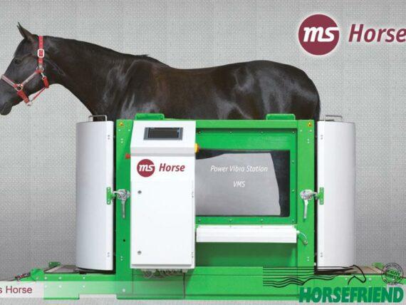 02. MS Horse Vibra Trainer