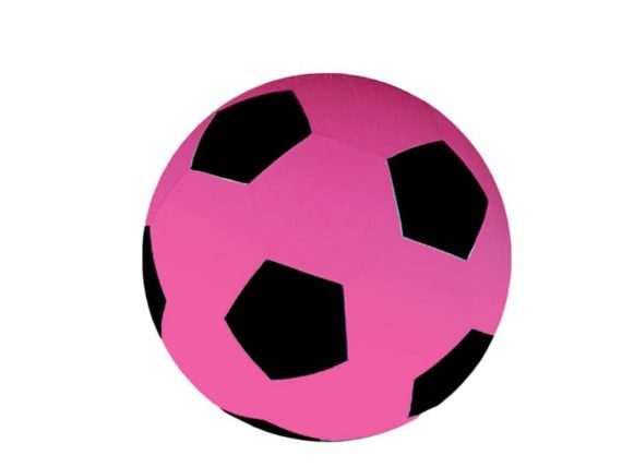 04.Paardenvoetbal Cover; voor 65cm kleur roze zwart